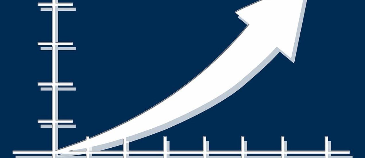 Internetski rast rasta