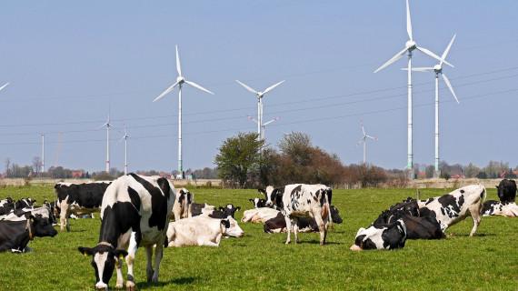 Informativna radionica u ŽK Osijek o podmjeri 4.1. Potpora za ulaganja u poljoprivredna gospodarstva