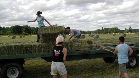 Poziv na registraciju članova Udruženja poljoprivrede