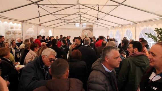 Dan otvorenih vrata peljeških podruma - 13. promocija vinarija