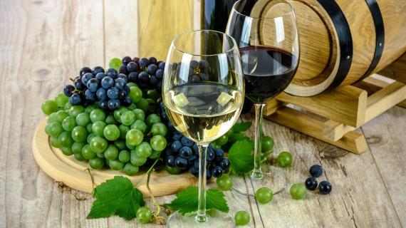 16. Međunarodni festival vina Interfest 2019