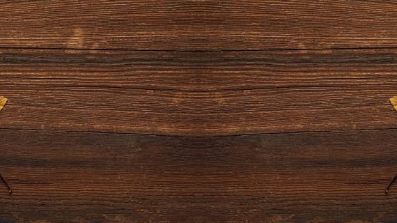 Osnivačka sjednica Strukovne grupe drvno-prerađivačke industrije ŽK Pula