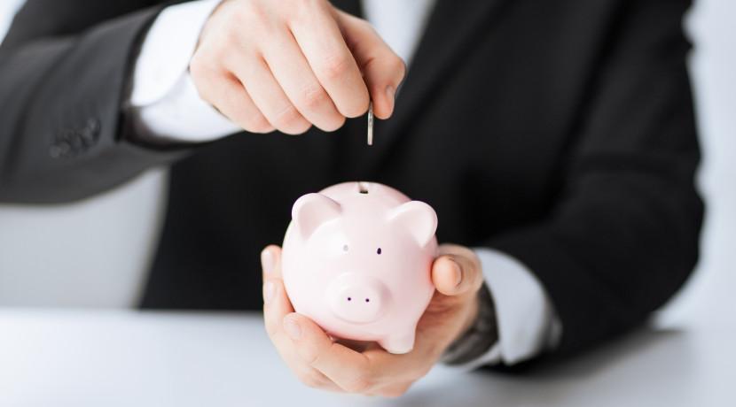 Zakon o državnoj agenciji za osiguranje štednih uloga i sanaciju banaka